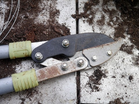 Quels sont les outils indispensables pour un jardinier - Quels outils pour jardiner ...