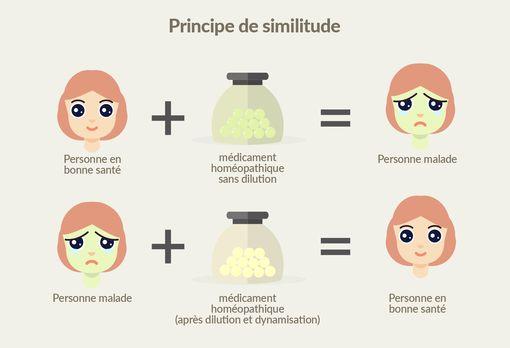 Principe de similitude