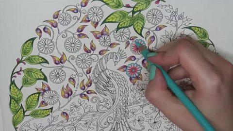 Le coloriage