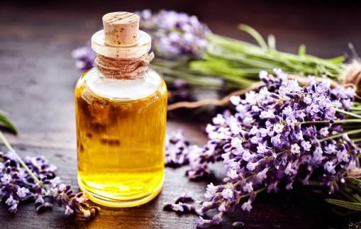 L'huile essentielle de lavande