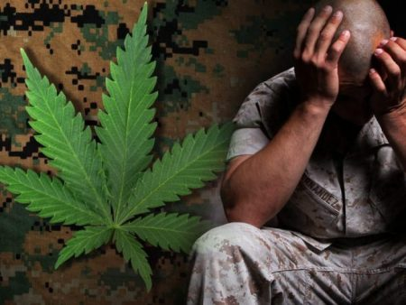 bienfaits cannabis efficacité