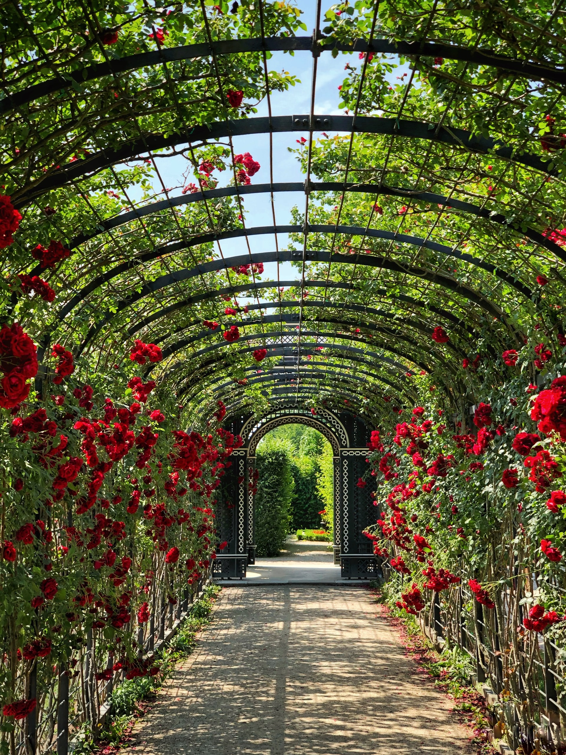 jardin | Espace Zen
